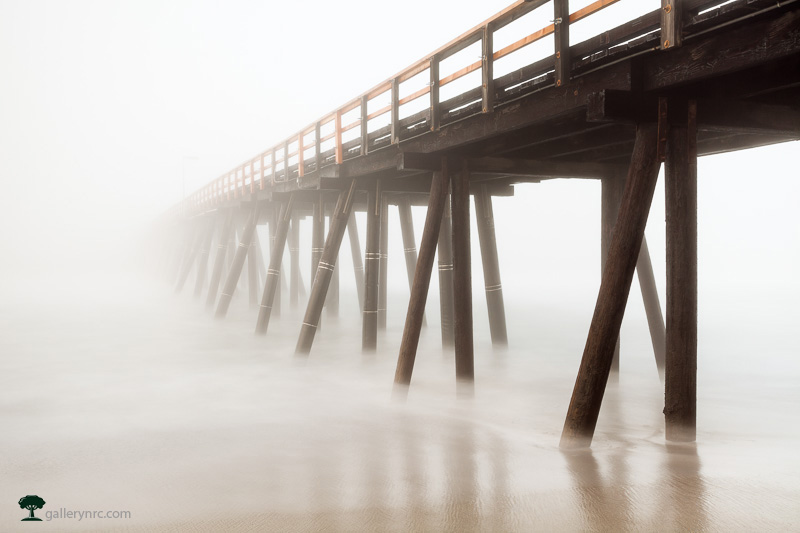 Extending into the Mist by Morgan Hagar