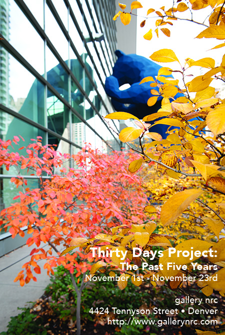 Thirty Days Project: The Past Five Years - Neil Corman
