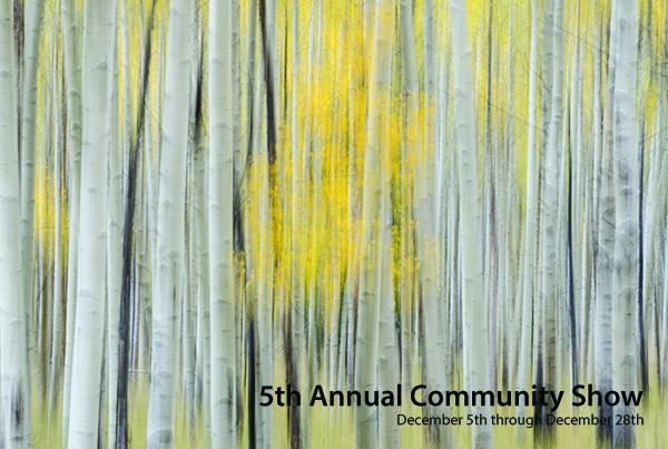 2013 Community Show